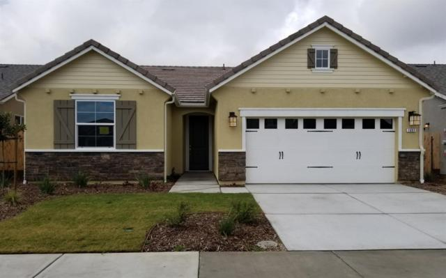 1651 Audrey Lane, Ripon, CA 95366 (MLS #19016092) :: Heidi Phong Real Estate Team