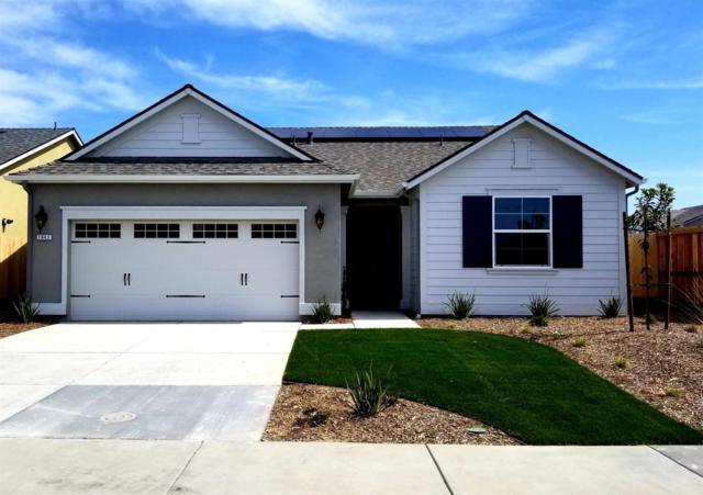 1642 Mcmanis Lane, Ripon, CA 95366 (MLS #19016094) :: Heidi Phong Real Estate Team