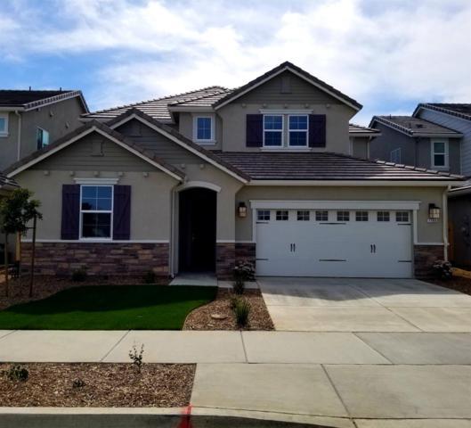 1186 Aartman Dr, Ripon, CA 95366 (MLS #19016103) :: Heidi Phong Real Estate Team