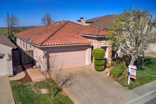 3943 Riley Anton Way, Sacramento, CA 95742 (MLS #19016106) :: Heidi Phong Real Estate Team
