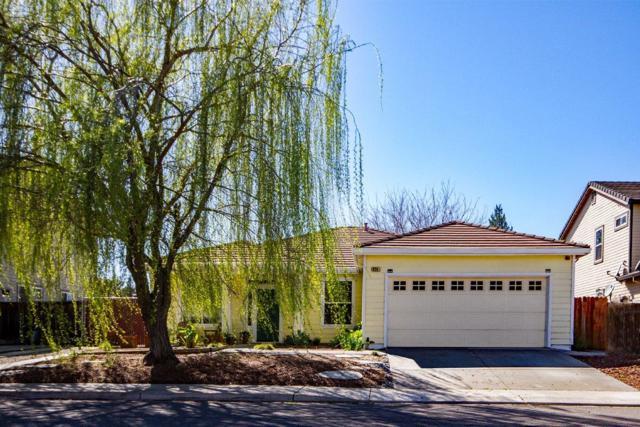 624 Ivy Loop, Winters, CA 95694 (MLS #19016126) :: The Del Real Group