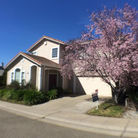 8333 Deer Spring Cir, Antelope, CA 95843 (MLS #19016148) :: eXp Realty - Tom Daves
