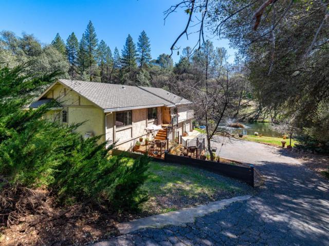 25139 Long Court, Auburn, CA 95602 (MLS #19016272) :: Heidi Phong Real Estate Team