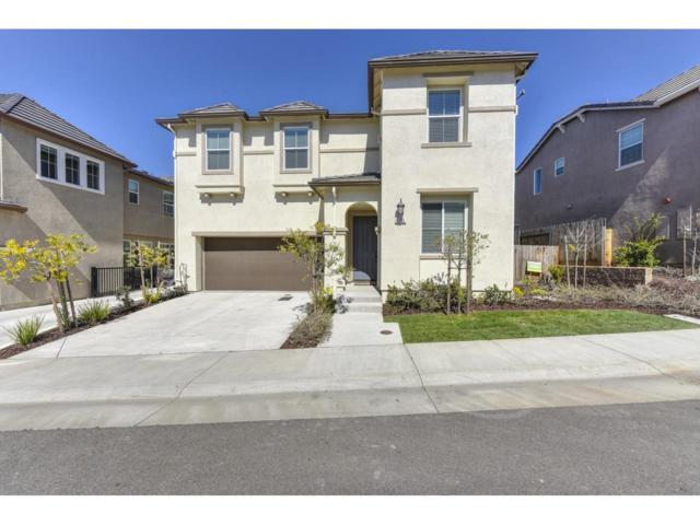 1705 Brodea Lane, Rocklin, CA 95765 (MLS #19016332) :: Keller Williams Realty
