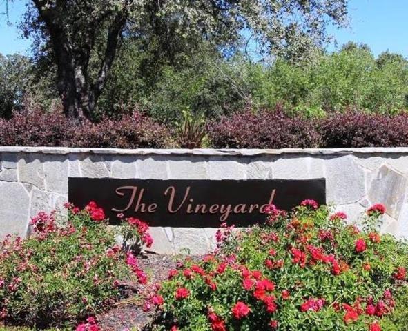 2460 Vineyard Drive, Auburn, CA 95603 (MLS #19016348) :: Dominic Brandon and Team