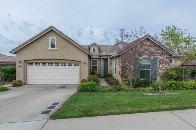 5704 Gelston Way, El Dorado Hills, CA 95762 (MLS #19016367) :: The Merlino Home Team