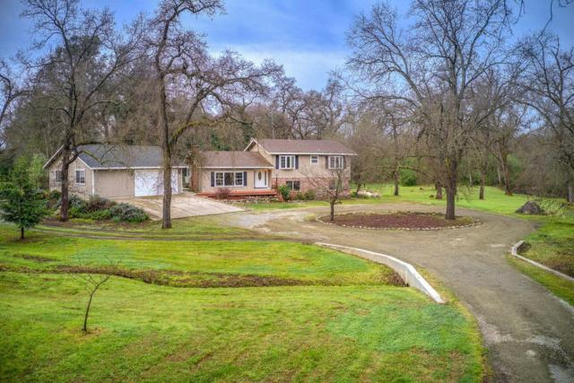 3820 Oak Tree Lane, Loomis, CA 95650 (MLS #19016555) :: Dominic Brandon and Team