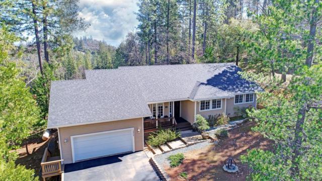 12940 Burnt Cedar Lane, Pine Grove, CA 95665 (MLS #19016575) :: Heidi Phong Real Estate Team
