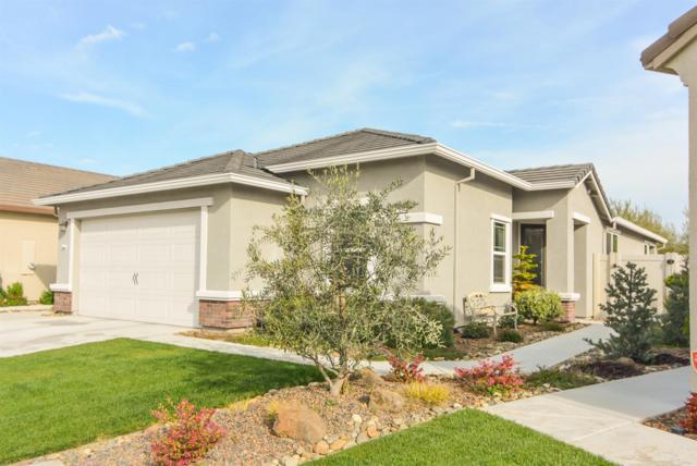 1537 River Birch Street, Manteca, CA 95336 (MLS #19016691) :: The MacDonald Group at PMZ Real Estate