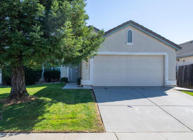 8878 Cherry Plum Court, Elk Grove, CA 95624 (MLS #19016782) :: The Del Real Group
