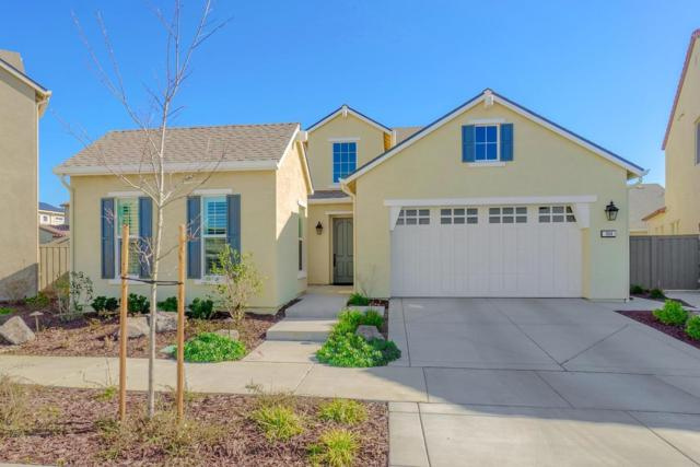 964 Pierce Lane, Davis, CA 95616 (MLS #19016917) :: Keller Williams Realty