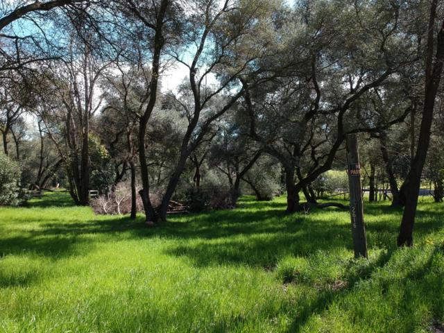 2616 Willow Way, Carmichael, CA 95608 (MLS #19017014) :: The Merlino Home Team