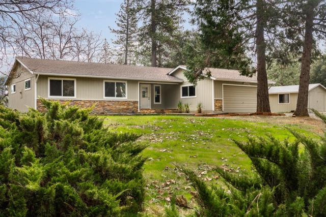 20391 Starlight Lane, Grass Valley, CA 95945 (MLS #19017021) :: Heidi Phong Real Estate Team