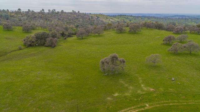0 Hwy 88 West, Sutter Creek, CA 95685 (MLS #19017035) :: REMAX Executive