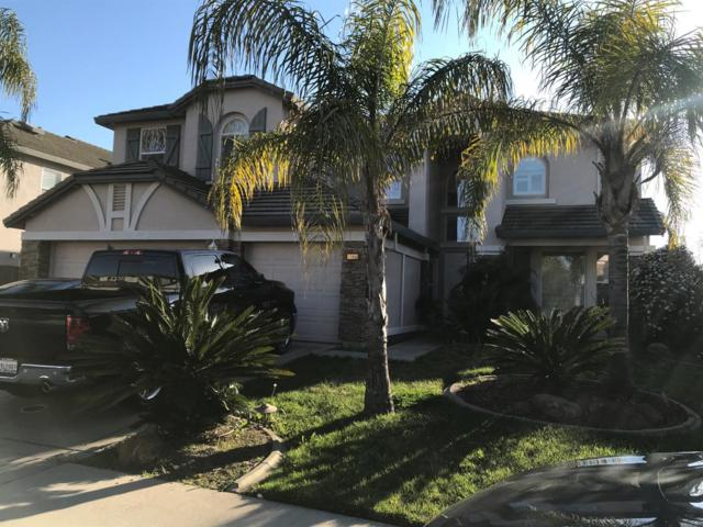 10224 Jenny Lynn Way, Elk Grove, CA 95757 (MLS #19017056) :: REMAX Executive