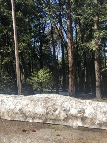 3580 Gold Ridge Trail, Pollock Pines, CA 95726 (MLS #19017075) :: The Del Real Group