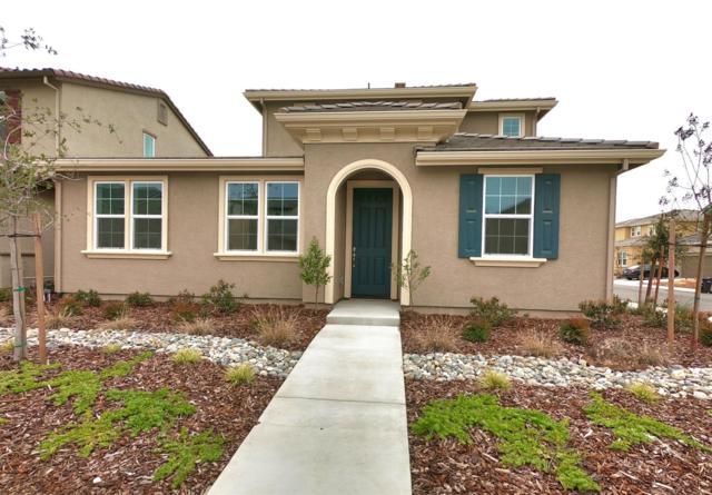8720 Esperia Way, Sacramento, CA 95828 (MLS #19017261) :: REMAX Executive