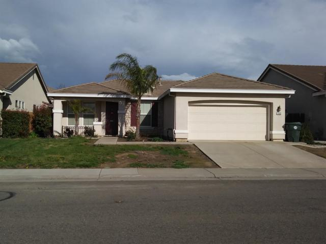 4605 Millner Way, Elk Grove, CA 95757 (MLS #19017302) :: REMAX Executive