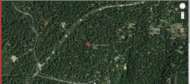 21603 State Highway 20 Highway, Nevada City, CA 95959 (MLS #19017304) :: The Del Real Group