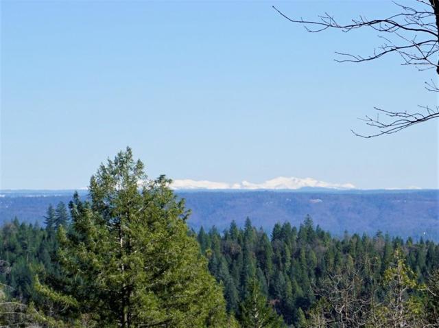 14585 Banner Lava Cap Road, Nevada City, CA 95959 (MLS #19017311) :: REMAX Executive