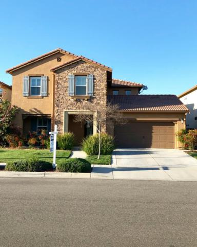 1339 Hadley Drive, Woodland, CA 95776 (MLS #19017540) :: The Del Real Group