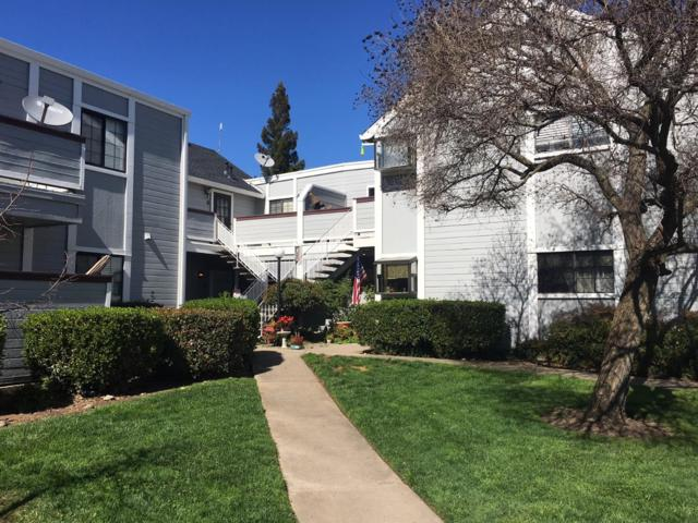 7401 Auburn Oaks Court, Citrus Heights, CA 95621 (MLS #19017602) :: The Del Real Group