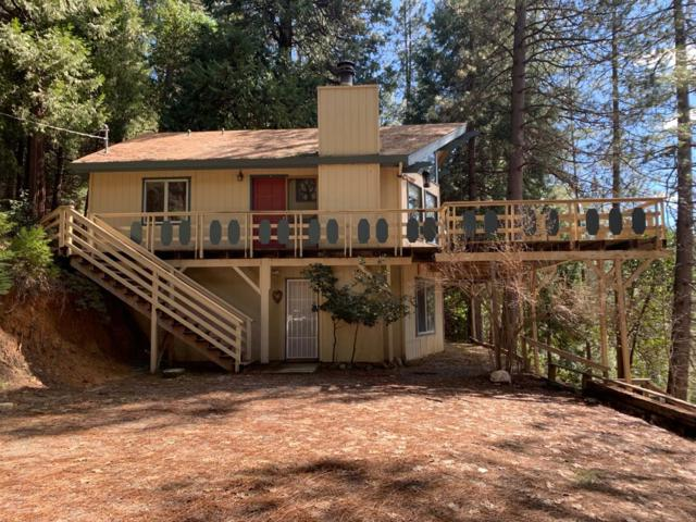 17528 E Antelope Drive, Pioneer, CA 95666 (MLS #19017619) :: REMAX Executive