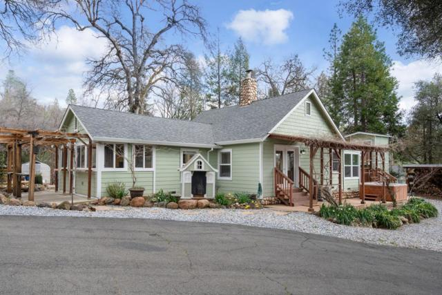 3559 Mining Brook Road, Placerville, CA 95667 (MLS #19017621) :: Dominic Brandon and Team
