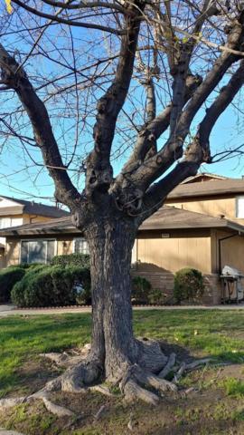 4549 Greenholme Drive #3, Sacramento, CA 95842 (MLS #19018014) :: Keller Williams Realty