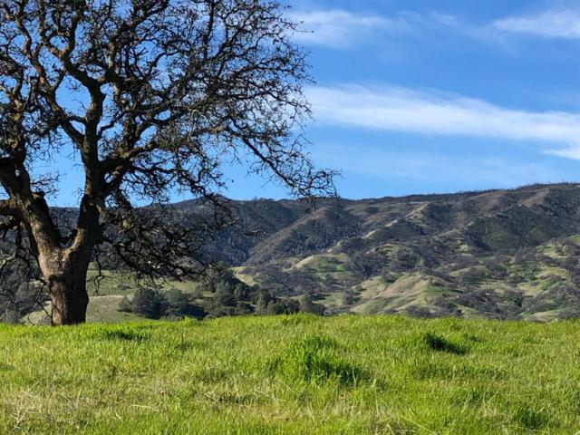 30246 Pleasant View Road, Winters, CA 95694 (MLS #19018168) :: The MacDonald Group at PMZ Real Estate