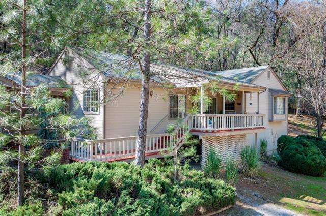 16978 Auburn Road, Grass Valley, CA 95949 (MLS #19018191) :: Heidi Phong Real Estate Team