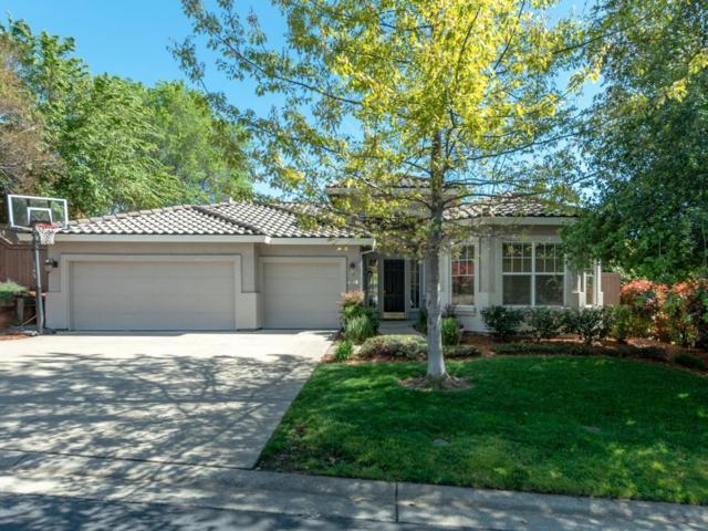 6018 Sundale Court, El Dorado Hills, CA 95762 (MLS #19018870) :: Heidi Phong Real Estate Team