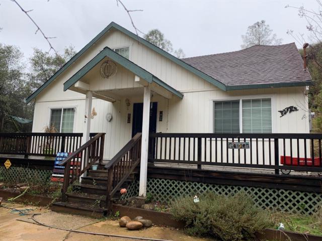 13055 W Irishtown Road, Pine Grove, CA 95665 (MLS #19019708) :: The MacDonald Group at PMZ Real Estate