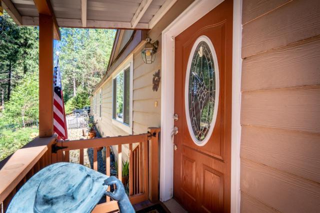 26770 Tiger Creek, Pioneer, CA 95666 (MLS #19019759) :: The MacDonald Group at PMZ Real Estate