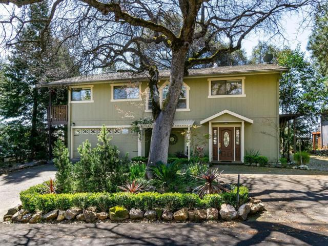 1664 Digger Tree Court, Cool, CA 95614 (MLS #19019813) :: The Del Real Group