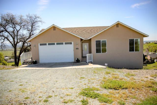 4010 Camanche Parkway, Ione, CA 95640 (MLS #19019992) :: Heidi Phong Real Estate Team