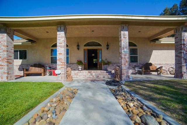 9885 E Louise Avenue, Manteca, CA 95336 (MLS #19020200) :: Keller Williams Realty