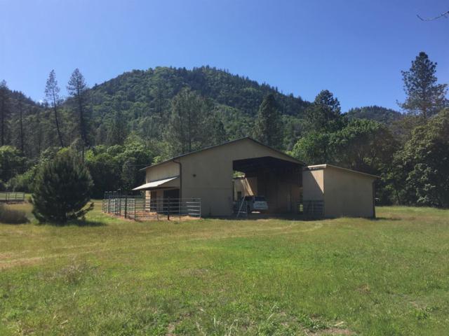 13306 Elk Mountain Road, Upper Lake, CA 95485 (MLS #19020207) :: Keller Williams - Rachel Adams Group