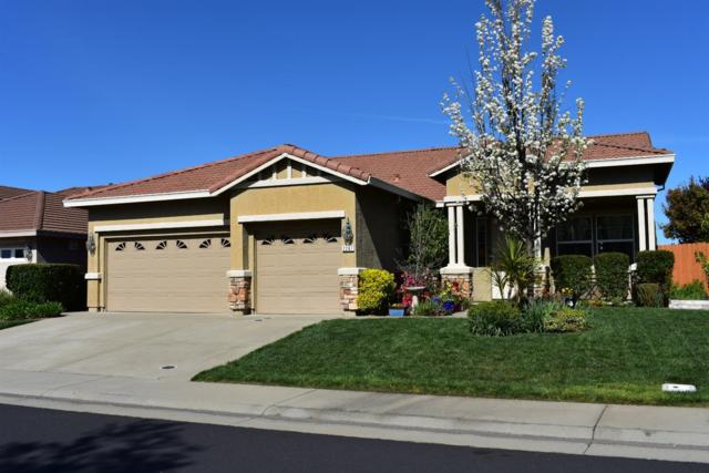 2287 Petruchio Way, Roseville, CA 95661 (MLS #19020238) :: The MacDonald Group at PMZ Real Estate
