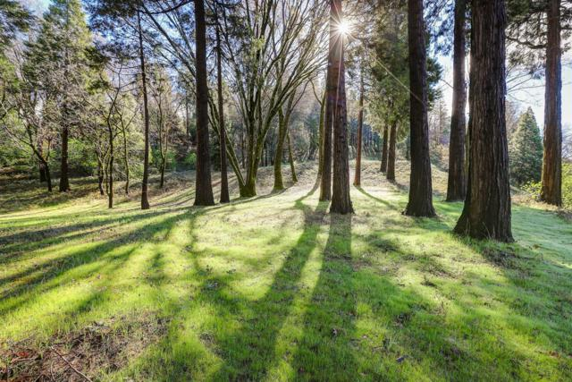 10690 Cement Hill Road, Nevada City, CA 95959 (MLS #19020368) :: The MacDonald Group at PMZ Real Estate