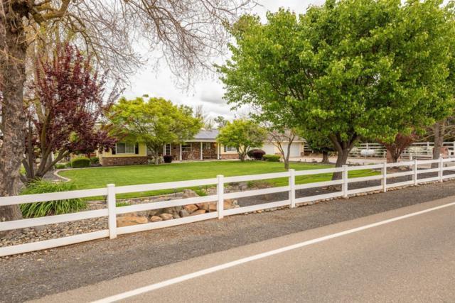 8885 Rodden Road, Oakdale, CA 95361 (MLS #19020408) :: Keller Williams Realty