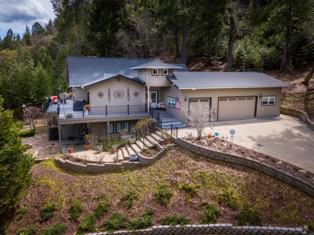 26370 Golf View Lane, Pioneer, CA 95666 (MLS #19020629) :: The MacDonald Group at PMZ Real Estate