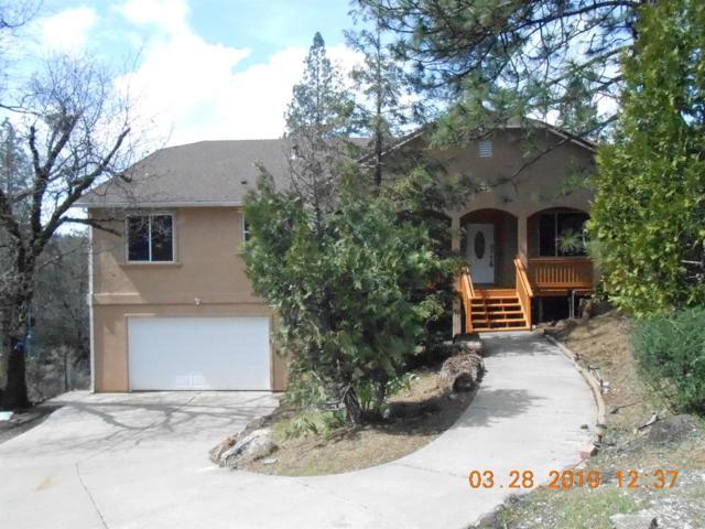 20890 Warner Road, Pine Grove, CA 95665 (MLS #19020647) :: The MacDonald Group at PMZ Real Estate