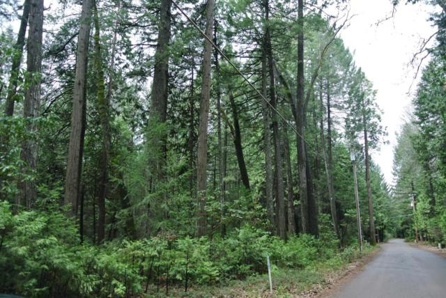 22800 Sluice Box Road, Foresthill, CA 95631 (MLS #19020815) :: Heidi Phong Real Estate Team