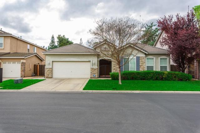 10589 Tank House Drive, Stockton, CA 95209 (MLS #19020948) :: The Home Team