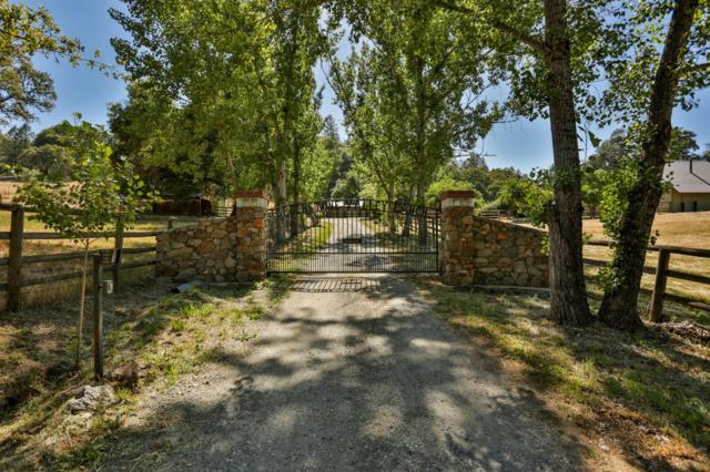 3660 Greenstone Road, Placerville, CA 95667 (MLS #19021072) :: The Del Real Group