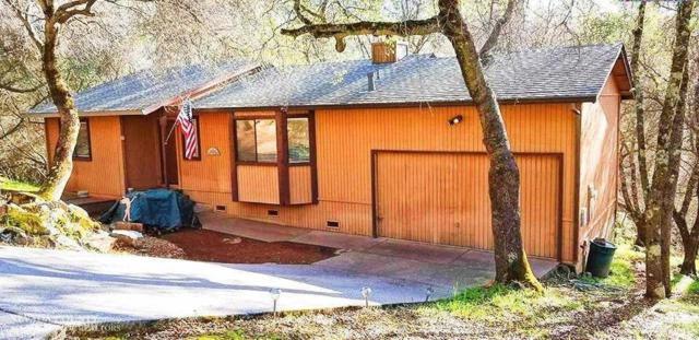11534 Buckeye Circle, Penn Valley, CA 95946 (MLS #19021150) :: Heidi Phong Real Estate Team