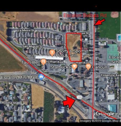 1260 Lillian Avenue, Escalon, CA 95320 (MLS #19021160) :: Dominic Brandon and Team
