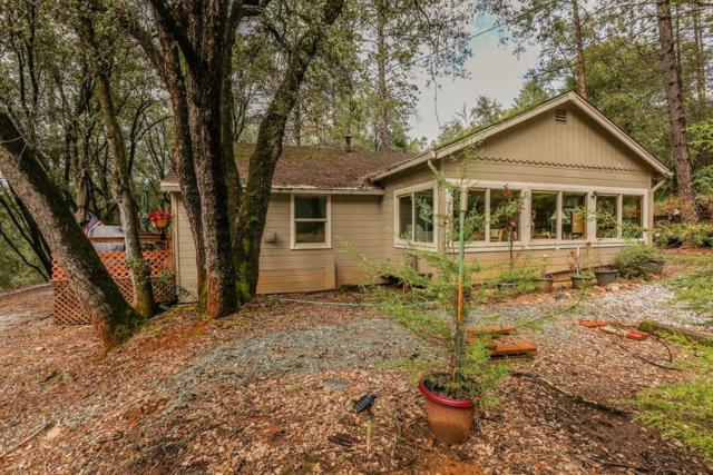 12936 Bonnefoy Road, Pine Grove, CA 95665 (MLS #19021202) :: The MacDonald Group at PMZ Real Estate