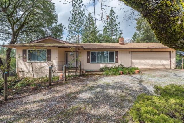 11225 Clinton Bar Road, Pine Grove, CA 95665 (MLS #19021320) :: The MacDonald Group at PMZ Real Estate